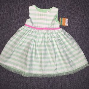 Gorgeous Carter's spring/Easter dress girl 18m NWT